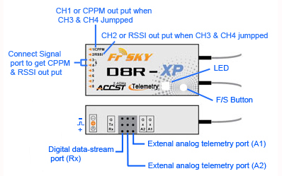 D8R-XP-1.jpg